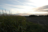De Soester Eng