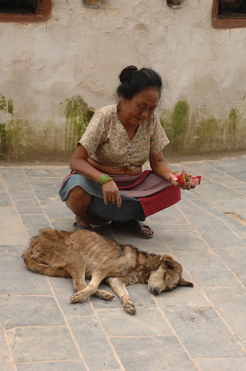 A woman praying over a dying stray dog at Boudhanath stupa in Nepal.