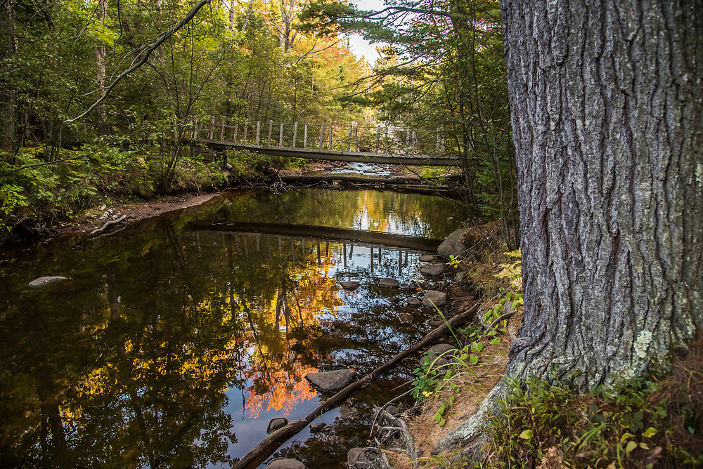 A bridge over Harlow Creek along the Little Presque Isle Songbird Trail near Marquette, Michigan.