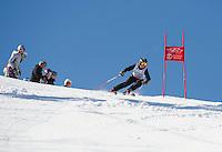 GSC Lafoley Spring Series giant slalom at Gunstock.  ©2014 Karen Bobotas Photographer