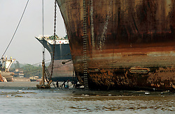 BANGLADESH MADHOM BIBIR HAT 7MARB05 - Labouroers are dwarfed like ants next to a beached whale at a shipbreaking yard at Madhom Bibir Hat outside Chittagong, Bangladesh...jre/Photo by Jiri Rezac..© Jiri Rezac 2005..Contact: +44 (0) 7050 110 417.Mobile: +44 (0) 7801 337 683.Office: +44 (0) 20 8968 9635..Email: jiri@jirirezac.com.Web: www.jirirezac.com..© All images Jiri Rezac 2005 - All rights reserved.