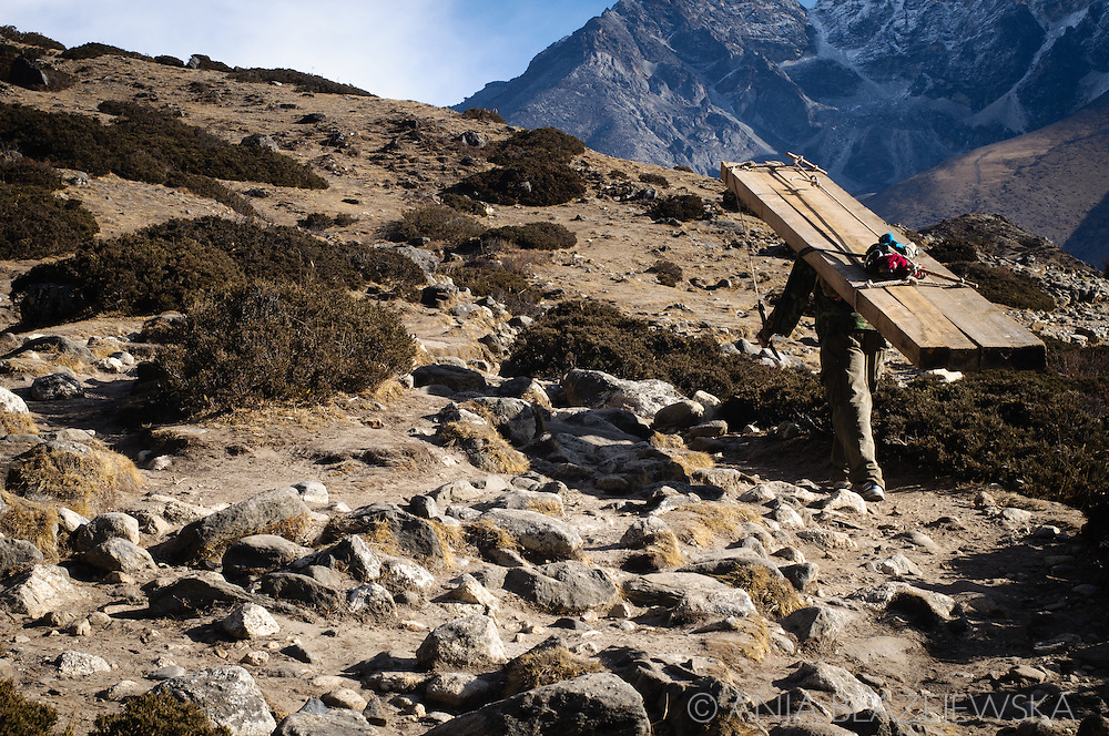 Nepal, Himalayas. Porter carrying wood on the mountain trail in Everest region.