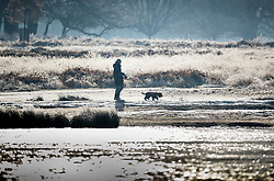 © Licensed to London News Pictures. 31/01/2019. London, UK. A dog walker passes a frozen Pen Ponds in Richmond Park after a night of sub zero temperatures. More snow is expected in the south overnight tonight. Photo credit: Peter Macdiarmid/LNP