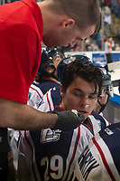 KELOWNA, CANADA - DECEMBER 5: Tri-City Americans' Athletic Therapist Zach Fournier tends to Paycen Bjorklund #29 on the bench against the Kelowna Rockets on December 5, 2018 at Prospera Place in Kelowna, British Columbia, Canada.  (Photo by Marissa Baecker/Shoot the Breeze)