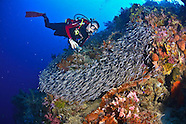 Indonesia, North Halmahera & Raja Ampat