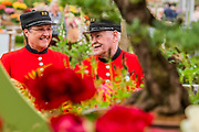 Chelsea Pensioners admire Binny plants - Press preview day at The RHS Chelsea Flower Show.