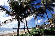 Couple, Kailua Beach, Oahu, Hawaii<br />