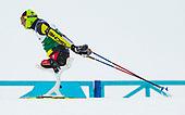 2019 World Para Nordic Ski Championships