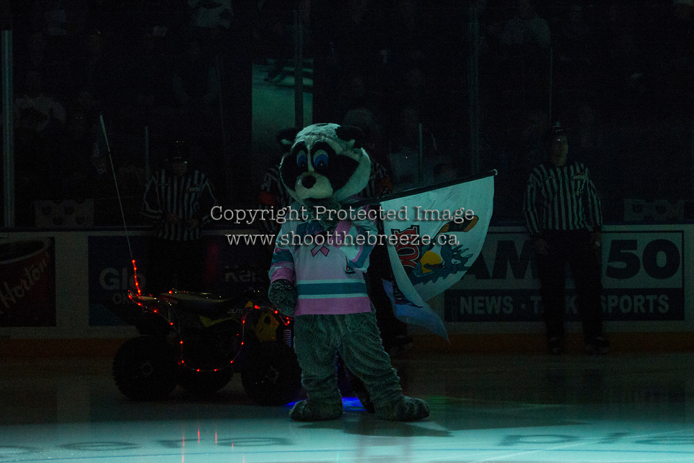 KELOWNA, CANADA - JANUARY 30: Rocky Raccoon, the mascot of the Kelowna Rockets stands at centre ice at the start of the game against the Medicine Hat Tigers on January 30, 2017 at Prospera Place in Kelowna, British Columbia, Canada.  (Photo by Marissa Baecker/Shoot the Breeze)  *** Local Caption ***