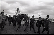 """26/06/1965<br /> 06/26/1965<br /> 26 June 1965<br /> Irish Sweeps Derby at the Curragh Race Course, Co. Kildare. Image shows """"Meadow Court"""" (L. Piggott up) jointly owned by Bing Crosby, Mrs Frank McMahon and Mr. G.M. Bell after winning the Irish Derby at the Curragh. Bing Crosby on left speaking with Lester Piggott.."""
