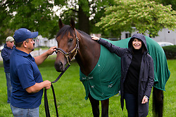 Kentucky Derby 142 winner Nyquist owner Zillah Reddam had her photo taken with the colt at his barn on the backside the morning after the race, Sunday, May 08, 2016 at Churchill Downs in Louisville.