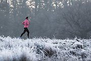 UNITED KINGDOM, London: 18 January 2017 An early morning jogger makes her way through a frosty Richmond Park during sunrise this morning. Temperatures dropped to -4C in certain parts of the capital last night causing wide spread frost. Rick Findler / Story Picture Agency