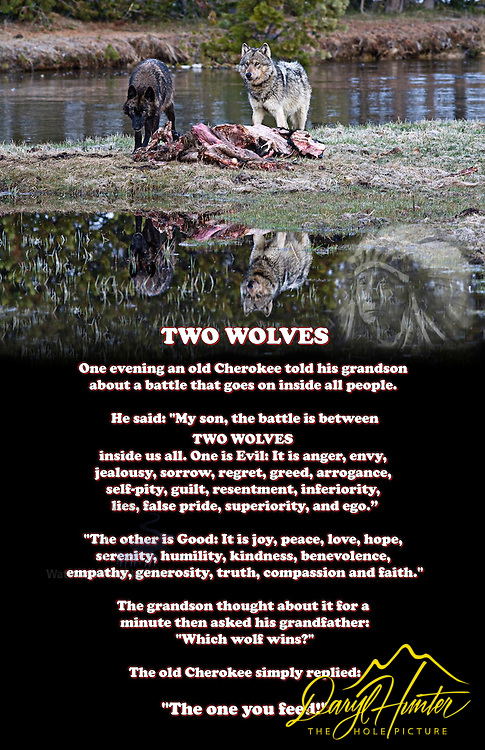 two wolves poster