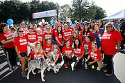Members of the California Check Cashing Stores pose for a group portrait during the 2014 Silicon Valley Heart & Stroke Walk at KLA-Tencor in Milpitas, California, on October 11, 2014. (Stan Olszewski/SOSKIphoto)