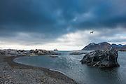Alkhornet, Svalbard, Arctic