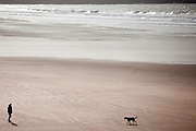 Man walking Labrador Retriever dog on the beach at Woolacombe, North Devon, UK