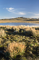 Paiute Lake, Hart Mountain National Antelope Refuge Oregon