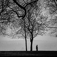 A silhouetted man walknig through trees in a park.