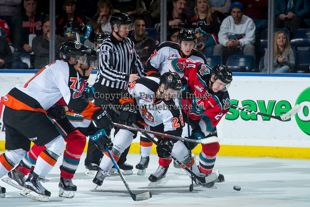 KELOWNA, CANADA - NOVEMBER 25: Ryan Chyzowski #29 of the Medicine Hat Tigers digs for the puck against Kyle Topping #24 of the Kelowna Rockets on November 25, 2017 at Prospera Place in Kelowna, British Columbia, Canada.  (Photo by Marissa Baecker/Shoot the Breeze)  *** Local Caption ***