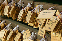 Japan Nara Kasuga Shrine Small wooden plaques with prayers and wishes (Ema)