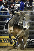 Marco Antonio Eguchi of Brazil rides SweetPro's Bruiser during the Professional Bull Riders, Built Ford Tough Series at the Sprint Center, Saturday, Feb. 11, 2017, in Kansas City, Mo. (AP Photo/Colin E. Braley)