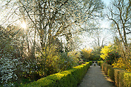 Chiswick House - Spring