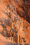 Pinnacles of the Bryce Canyon in the evening light, Bryce National Park,Utah