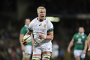 11 June 2016, Pieter Steph Du Toit of South Africa during the South Africa versus Ireland Test Match at Newlands Stadium,  Cape Town, SOUTH AFRICA.<br /> <br /> <br /> Photo by:Luigi Bennett/Image SA