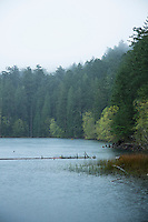 Mountain Lake, Moran State Park. Orcas  Island, Washington.