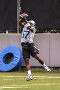 Carolina Panthers linebacker Andre Smith(57) catches a pass during minicamp at Bank of America Stadium, Thursday, June 13, 2019, in Charlotte, NC. (Brian Villanueva/Image of Sport)