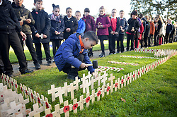 Children from schools across Swindon hammer home crosses in the Royal Wootton Bassett Field of Remembrance at Lydiard park, Swindon, as it opens to honour and remember those who have been lost serving in the Armed Forces.