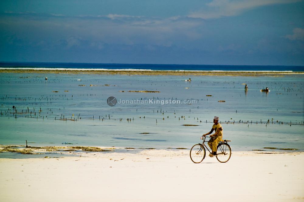 A young man rides his bike through the white sand beach while people harvest seaweed in the distance. Matemwe, Zanzibar, Tanzania.