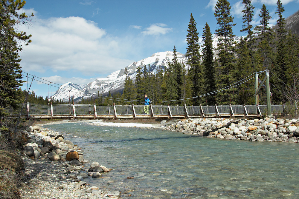 A hiker crosses the suspension bridge across the Vermillion River on the trail to the Paint Pots of Kootenay National Park, British Columbia, Canada. Spring. Afternoon. MR.