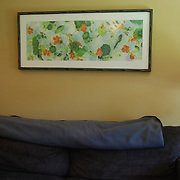 A commission for a play room, framed is 20 x 48""