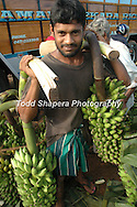 Banana seller in Sri Lanka.