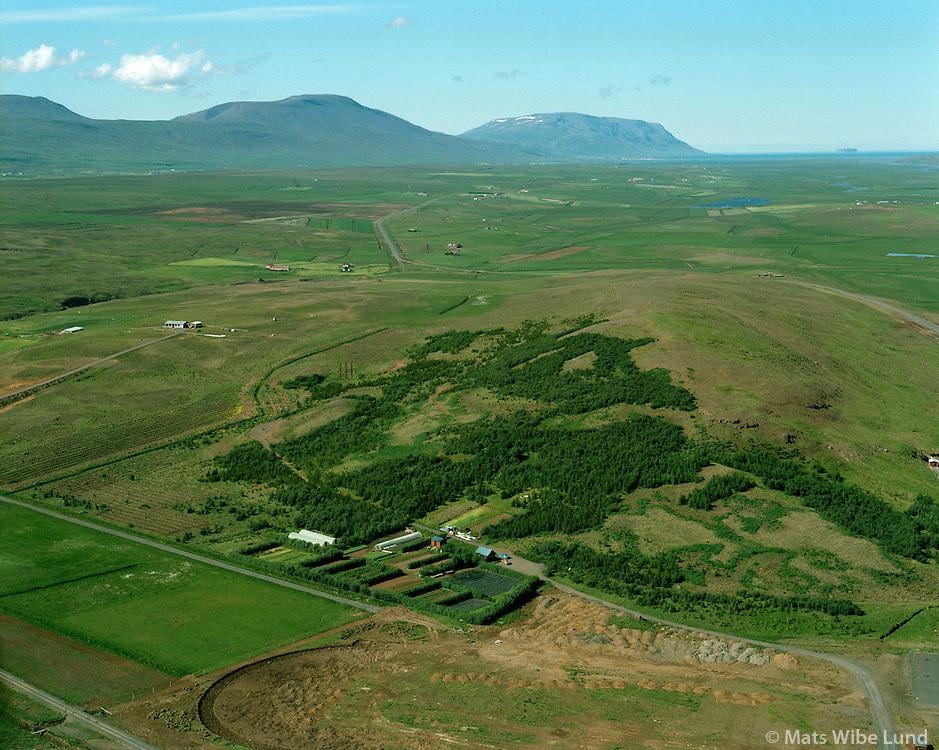 Laugarbrekka forest station and Reykjarholl farm left in background. Seyluhreppur.