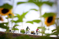 People on bicycles with trailers ride on the road in Sauvie Island near Portland, Oregon.  Sunflowers in the foreground show a summer feel.