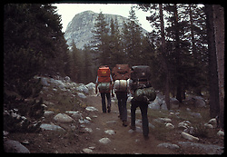 On the Trail to Young Lakes, Yosemite National Park. View shot on Hi Speed Ektachrome ASA 400, Nikon Ftn camera, Nikor 35mm f/2 lens, 250th F/8.3, 31 July 1973