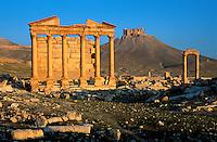 Syrie - Palmyre - Temple funeraire et Chateau Arabe