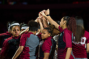 South Carolina Gamecocks huddle up before tip off against the Mississippi State Lady Bulldogs during the NCAA Women's Championship game at the American Airlines Center in Dallas, Texas on April 2, 2017.  (Cooper Neill for The Players Tribune)