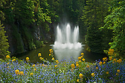 Fountain in Butchart Gardens<br /> Victoria<br /> British Columbia<br /> Canada