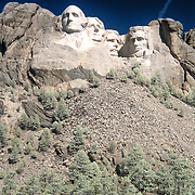 The Mount Rushmore National Memorial, near Keystone, South Dakota, is a monumental granite sculpture by Gutzon Borglum. The monument represents the first 150 years of the history of the United States of America with 60-foot (18 m) sculptures of the heads of former United States presidents (left to right): George Washington, Thomas Jefferson , Theodore Roosevelt, and Abraham Lincoln. The entire memorial covers 1,278.45 acres (5.17 km2) and is 5,725 feet (1,745 m) above sea level...This is a digital combination of an infrared image and a visible color image.  The color picture is used to colorize the infrared image giving a foreign and new perspective.  Plants and trees reflect more infrared light and appear brighter in images while the sky reflects less making it darker.