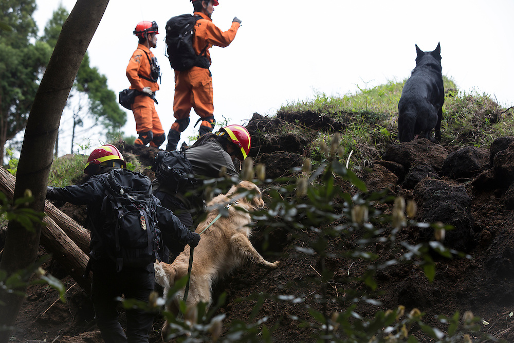 KUMAMOTO, JAPAN - APRIL 18: Rescue team with k9 dog continue to find missing bodies on April 18, 2016 Monday in Minamiaso, Kumamoto, Japan. The magnitude 7.3 earthquake hit Kyushu, just after the earthquake killed 9, at least 26 new fatalities by this earthquake, total death toll from the series of earthquake rises to 35.<br /> <br /> Photo: Richard Atrero de Guzman