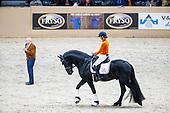 Clinic Opleiding van het Friese paard in de Dressuur