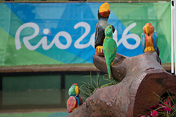Obstacle<br /> Olympic Games Rio 2016<br /> © Hippo Foto - Dirk Caremans<br /> 08/08/16