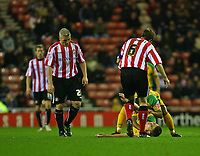 Photo: Andrew Unwin.<br />Sunderland v Norwich City. Coca Cola Championship. 02/12/2006.<br />Both teams' players rush to the aide of Norwich's Carl Robinson (R, floor).
