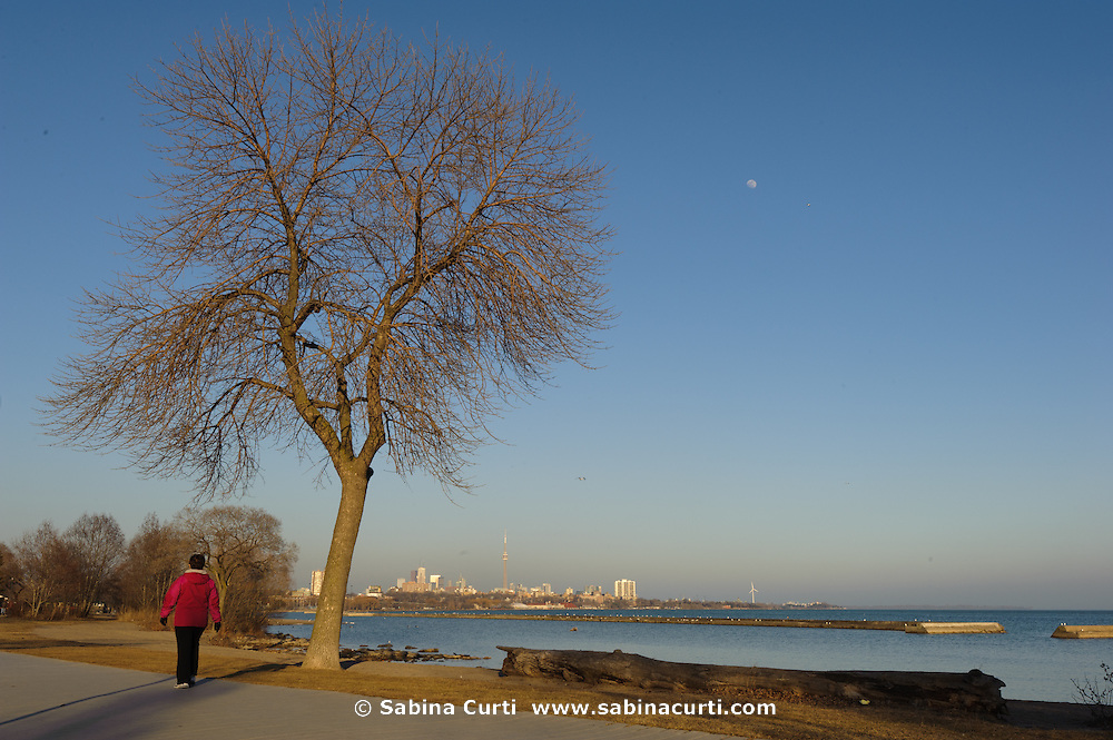Lake Shore Drive park, evening in March