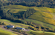 Willakenzie Estate aerial view, Willamette Valley, Yamhill-Carlton, Oregon