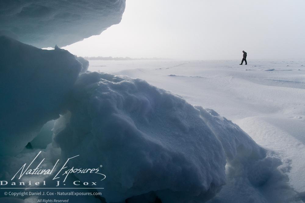 Dr. Steven Amstrup, lead polar bear scientist for the USGS, checking polar bear tracks on the ice of the Beaufort Sea, Alaska.