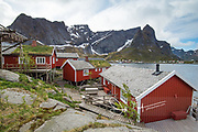 Red houses with grass roofs are perched along the harbour in Reine, Lofoten islands, Norway.